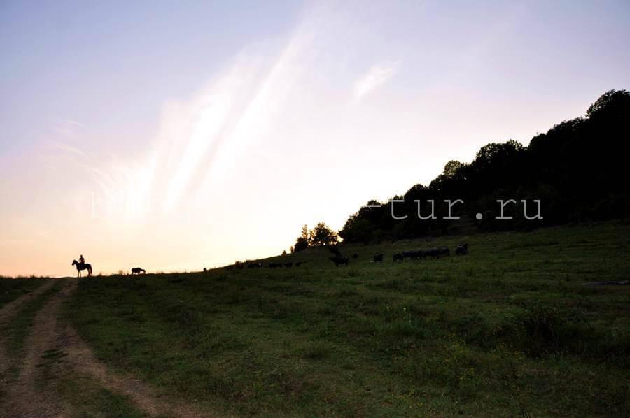 Закат над полем