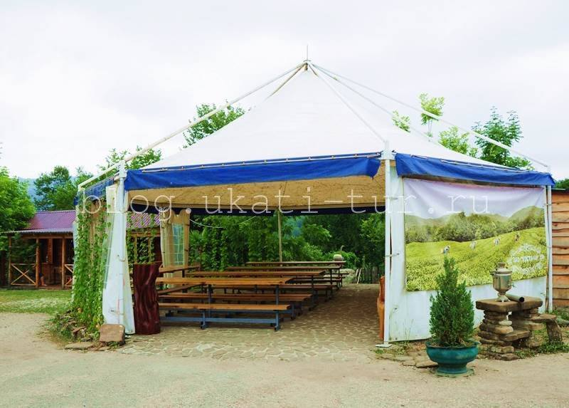 шатёр для дегустаций
