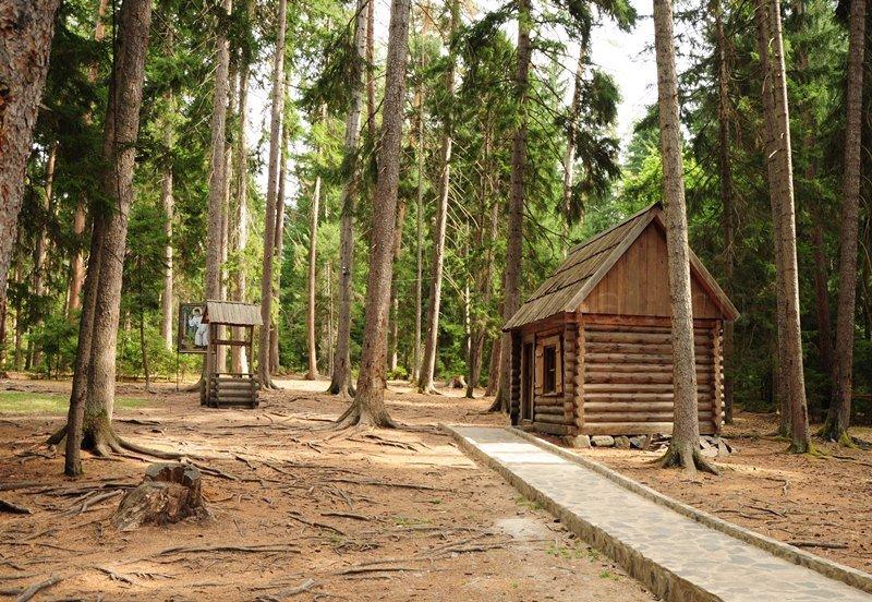 domik-v-lesy
