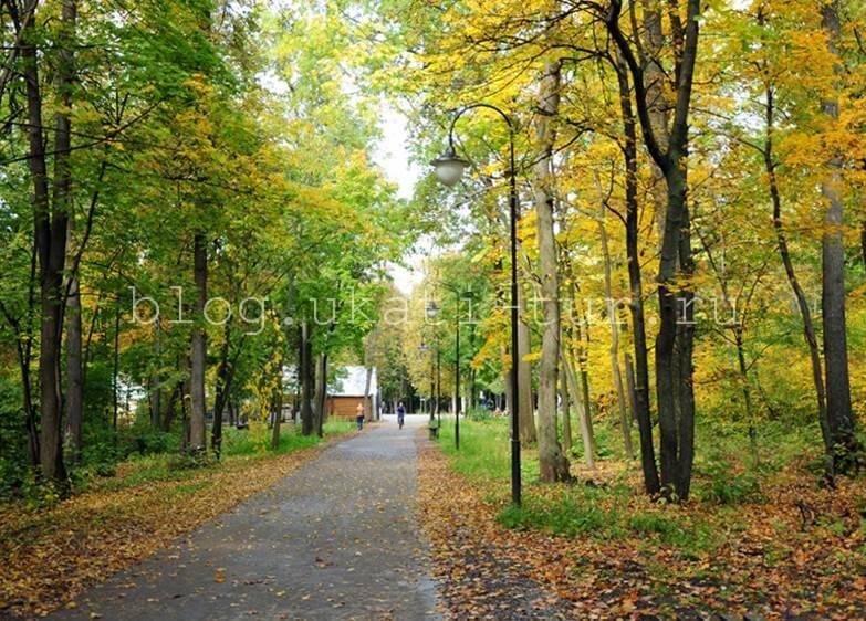 Парк Лесоводов2