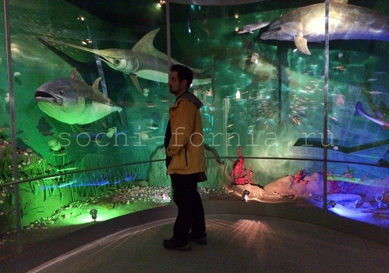 Museum_Zal_More