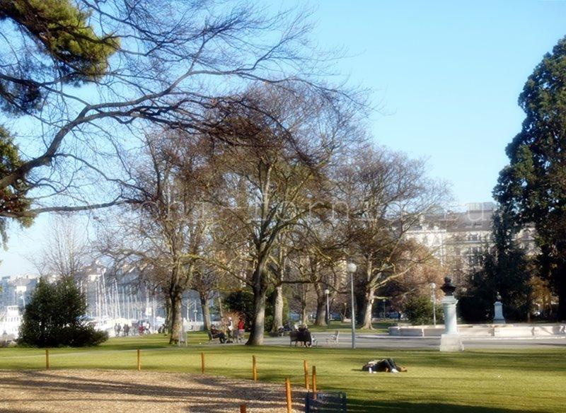 English_Park