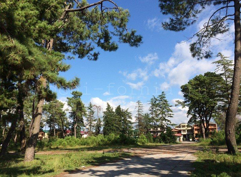 Kobuleti_park